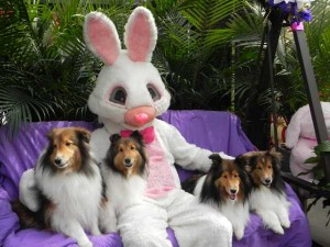 picture-with-easter-bunny