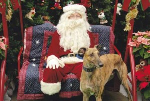 picture-with-santa